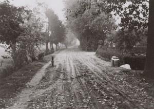 Figuur 16: De Biesbosserweeg in 1955 vlakbij de Schekkermeent (toen de Groep).