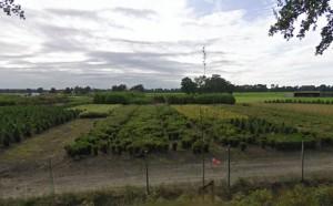 Figuur 17: Uitzicht vanaf de Biesbosserweg ter hoogte van de bocht in zuidwestelijke richting.