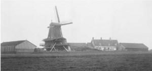 De balkenzager Het Zwarte Schaap. Foto begin 20ste eeuw.